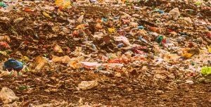 Вывоз мусора в Видном