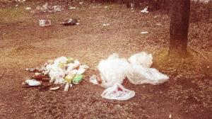 Цена на вывоз мусора в Лобне