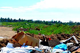 Фирмы по вывозу мусора
