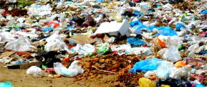 Цена вывоза мусора