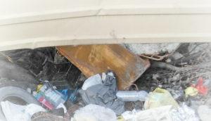 Вывоз мусора контейнером в Королеве