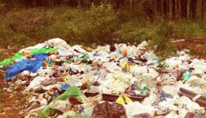 Вывоз мусора контейнером в Красногорске
