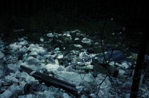 Вывоз мусора в Домодедово недорого