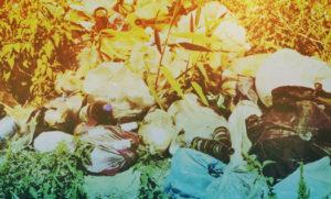 Вывоз мусора в Егорьевске контейнером