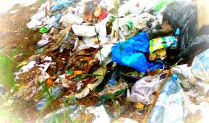 Вывоз мусора в Ногинском районе