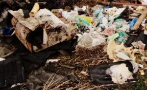 Вывоз мусора в Раменском районе
