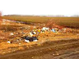 Вывоз мусора в Щелковском районе