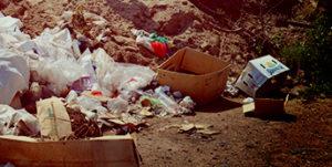 Вывоз мусора в Волоколамске недорого