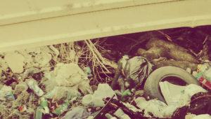 Вывоз строительного мусора в Химках