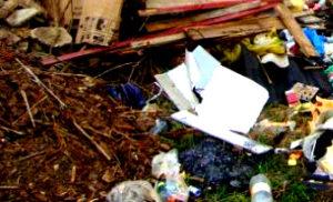 Вывоз строительного мусора в Мытищах