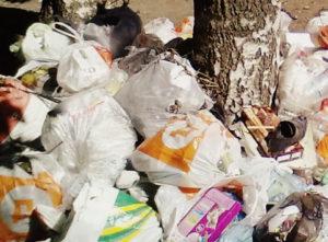 Вывоз мусора в Икше