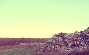 Вывоз мусора в Марушкино