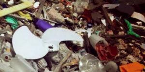 Цены на вывоз мусора в Дзержинском