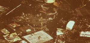 Цены на вывоз мусора в Солнцево
