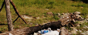 Вывоз мусора в Новогиреево