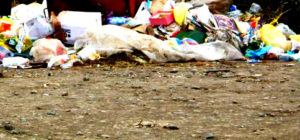 Вывоз мусора в Дорохово