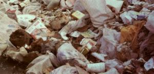 Недорогой вывоз мусора в Ликино-Дулево