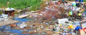 Промышленный вывоз мусора