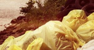 Расценки на вывоз мусора в Хотьково
