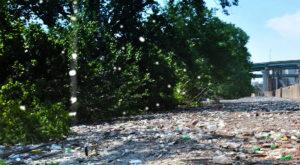 Стоимость вывоза мусора в Павловской Слободе