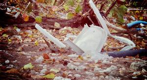 Стоимость вывоза мусора во Внуково