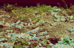 Вывоз мусора в Дедовске срочно