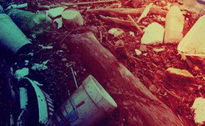 Вывоз мусора в Дорохово по заявкам