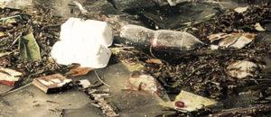 Вывоз мусора в Кубинке по заказу